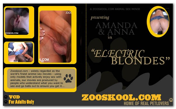 Home Of Real PetLover - Electric Blonds