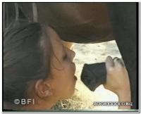 041 - Horse Teeny Lovers 2
