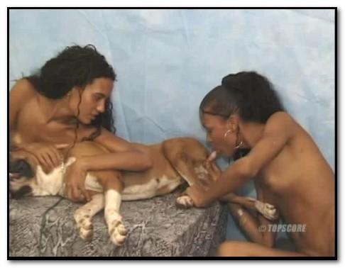 Brazilian ZooSex_013