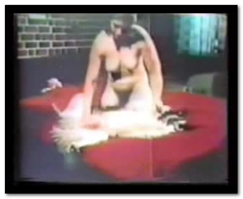 Bodil Joensen - Animal Sex Pornstars - Lassie