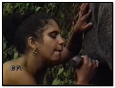 African Animal Sex_04