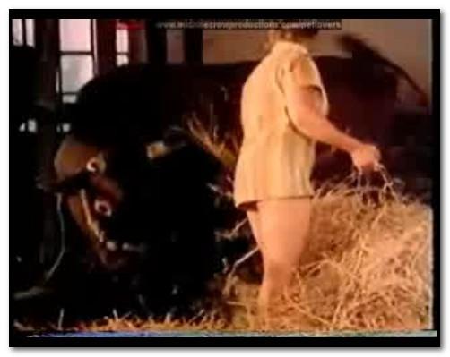 Bodil Joensen - Animal Sex Pornstars - Bestia