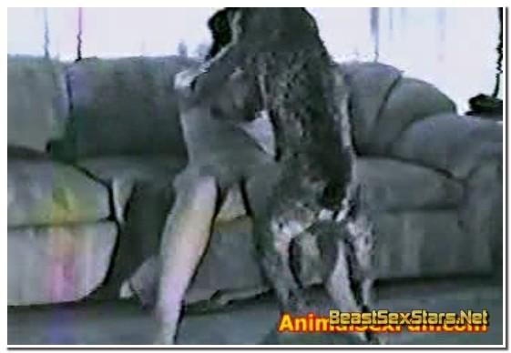 081-Animal-Sex-Farm-1.jpg