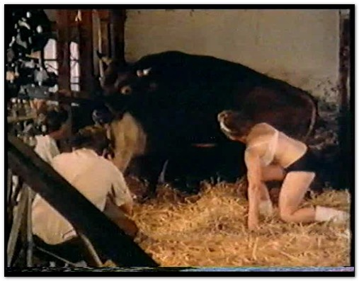 Bodil-Joensen-Animal-Sex-Pornstars-Una-Donna-e-la-sua-Calda-Bestia-Why-Do-They-Do-It-3.jpg