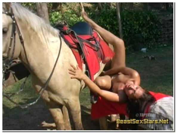 Topscore-Animal-Abuses-Arse-2.jpg