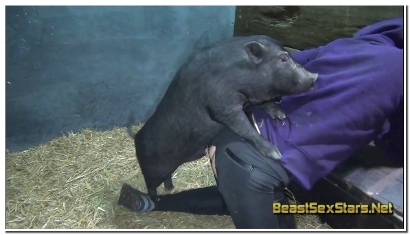 Extreme Sex With Various Animals - Wild Boar Fucks A Girl - Sex ...