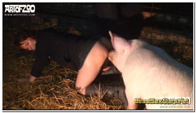 04 - Wild Boar Fucks A Girl - Sex With Pigs