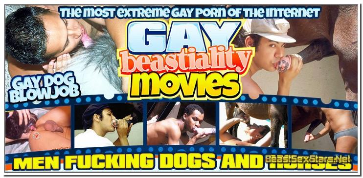 GAY BEASTIALITY MOVIES