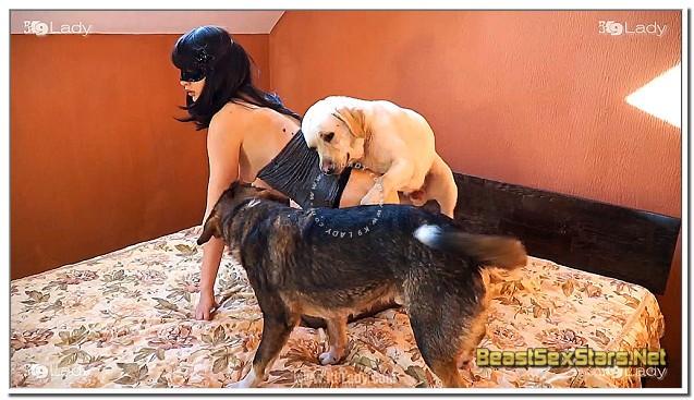 Dog Sex Jasmin