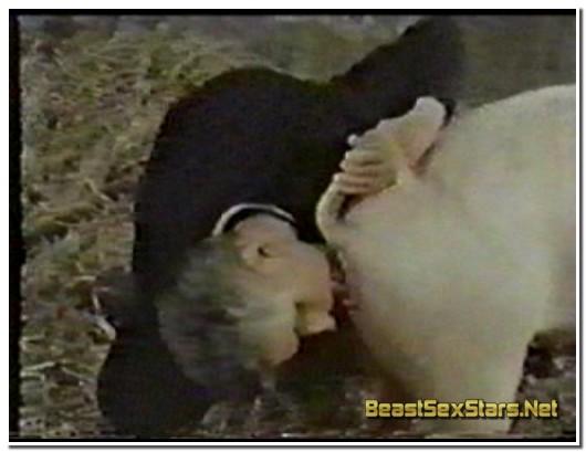 23-Wild-Boar-Fucks-A-Girl-Sex-With-Pigs-2.jpg