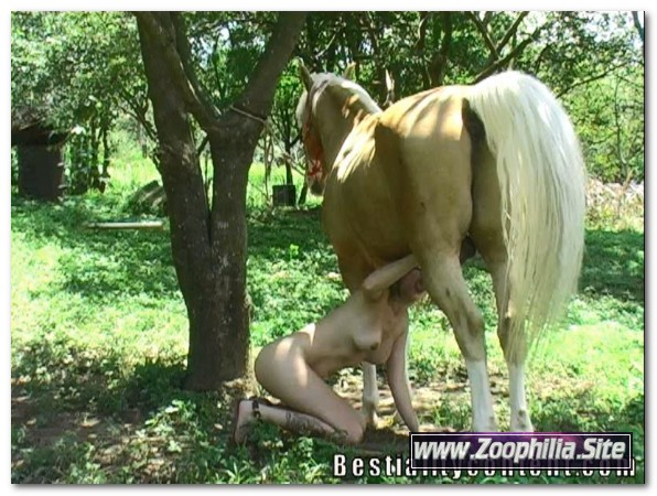 0116 - EXTREME SCENES OF SEX WITH VARIOUS ANIMALS