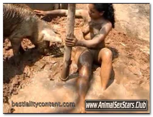 127 - Animal Sex Farm