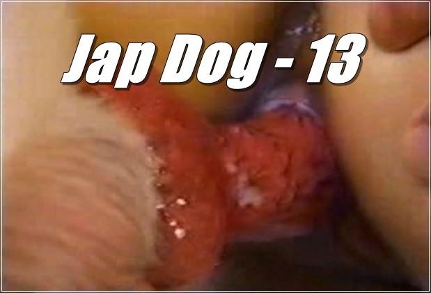 Jap Dog - 13