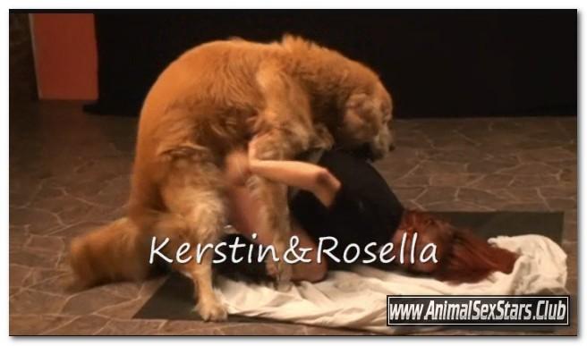 154 - Rosella