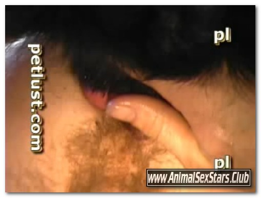 Pet Lust - Dog Cock For Guys 2