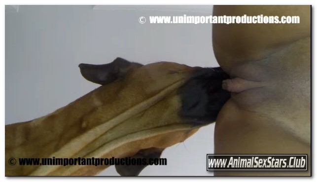 Unimportant Productions - Luna - Fucking Around