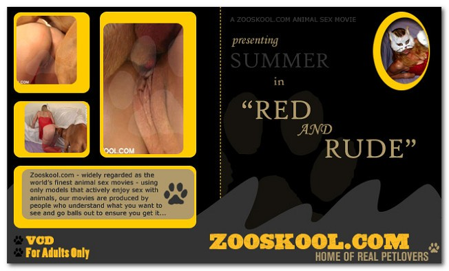 Home Of Real PetLover - Summer Red And Rude