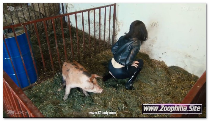 29 - Wild Boar Fucks A Girl - Sex With Pigs