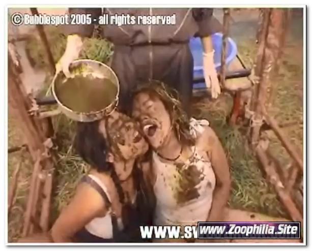 104 - Zoo Scat